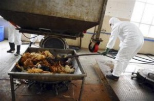 H7N9型鳥インフル用ワクチン、初期治験は「画期的な結果」