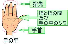 手洗い 注意ポイント 感染症対策 食中毒対策広島